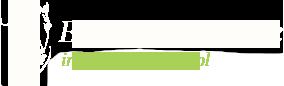 logo_h5.png